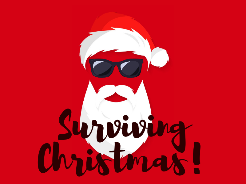 Christmas Survival Guide
